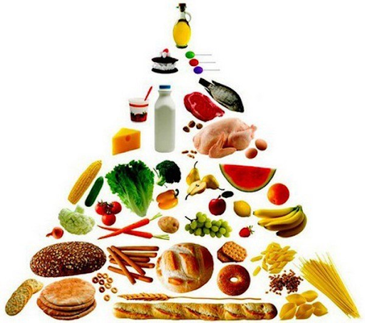 Vai trò quan trọng của nguồn dinh dưỡng